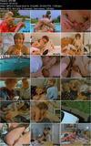 Bestsellers Video 241 (1994)