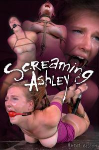 HARDTIED: Oct 8, 2014: Screaming Ashley   Ashley Lane   Jack Hammer