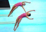 http://img43.imagevenue.com/loc47/th_43204_diving_world_champs_shanghai_2011_040_122_47lo.jpg