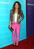 Сара Шахи, фото 500. Sarah Shahi NBC Universal Winter Tour All-Star Party in Pasadena - 06.01.2012, foto 500